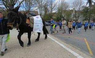 Les personnels pénitentiaires soutiennent la recherche sur les cancers de l'enfant, en marchant avec un mulet