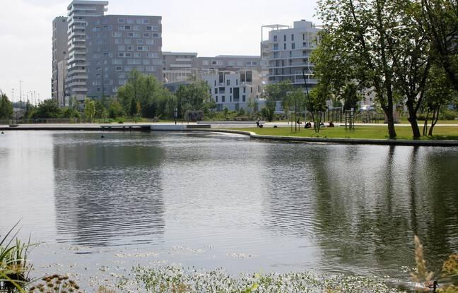 Dans le quartier de Baud-Chardonnet, à Rennes, des plages ont été aménagées le long de la Vilaine. Mais interdiction de s'y baigner, à cause des cyanobactéries.