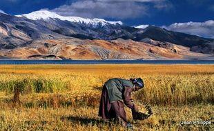Extrait de l'exposition «L'eau, trésor de l'Himalaya».