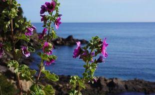 Ingrédient capital d'une photo de bord de mer: une ligne d'horizon parfaite! Pensez à redresser les vôtres avec un logiciel dédié...