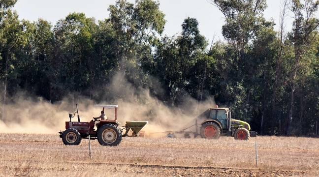 Le suicide des agriculteurs, un phénomène encore tabou qui dure