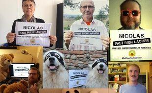 Campagne lancée par l'association Adet-Pays de l'Ours demandant à Nicolas Hulot des lâchers d'ourses.