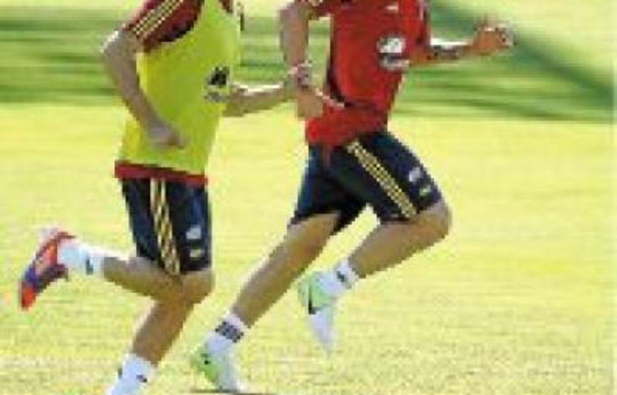 Alvaro Negredo et Fernando Torres. –  EFE / SIPA