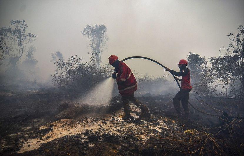 Indonésie : Un nuage rouge, causé par des incendies, envahit le ciel