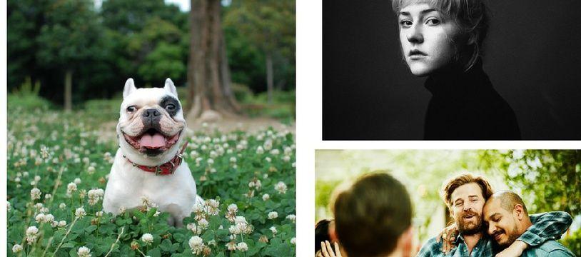 Trois photos représentants les trois tendances visuelles 2018: le «réalisme conceptuel», la «Renaissance contemporaine» et le «masculin (re)composé»