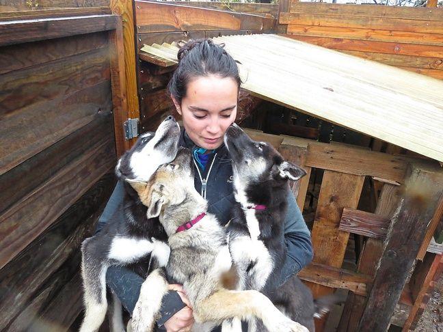 Emilie habite Couëron, près de Nantes, avec ses 10 chiens