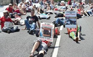 Les manifestants se sont allongés sur le Pont-Neuff enjambant la Garonne, en signe de protestation.
