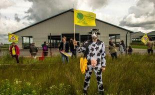 Des membres de la Confédération paysanne protestent le 30 mai 2015 devant la ferme d'élévage dite des 1.000 vaches, à Drucat (Picardie)