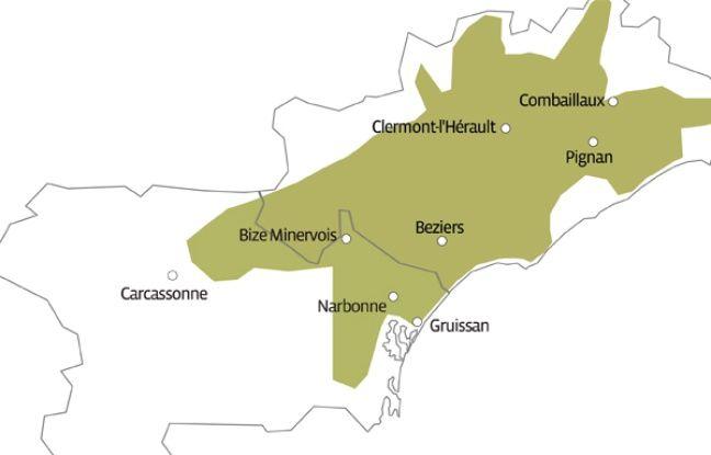 L'aire géographique de la Lucques du Languedoc, qui s'étend dans l'Hérault et l'Aude.