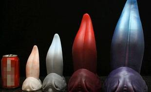 Capture d'écran du site Jezebel.com qui établit un classement des sex toys les plus étranges, le 26 juillet 2013.Ici les langues de dragons.