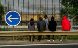 Des migrants à Coquelles près de Calais, le 31 juillet 2015