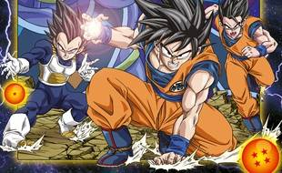 dragon ball france