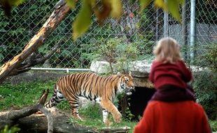 L'avenir du zoo du parc de la tête d'or divise les candidats à la métropole de Lyon.
