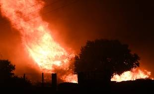 L'incendie dans la forêt de Vitrolles a parcouru 4,5 km et ravagé 3,5 km2 de terrain le 10 août 2016
