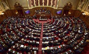 Le Sénat examine en ce moment le projet de loi asile-immigration (illustration).