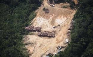 Déforestation illégale dans la forêt amazonienne au Brésil le 14 octobre 2014