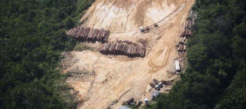 Déforestation illégale dans la forêt amazonienne au Brésil.