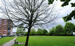 Le parc de l'Agrippin à Wambrechies, où Angélique Six a été vue pour la dernière fois.