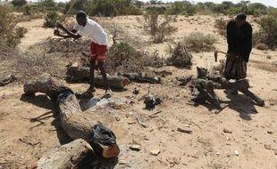 Hassan Hussein coupe quarante arbres par mois pour les transformer en charbon, parfaitement conscient des dommages qu'il cause à son environnement; mais c'est la dernière ressource qui reste à cet éleveur privé de bétail.