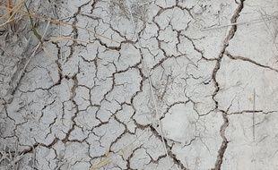 L'absence de pluie, les fortes chaleurs et le vent continuent d'assécher les affluents de l'Orb, le fleuve qui arrose l'ouest de l'Hérault. Les mesures de restriction d'eau sont durcies…