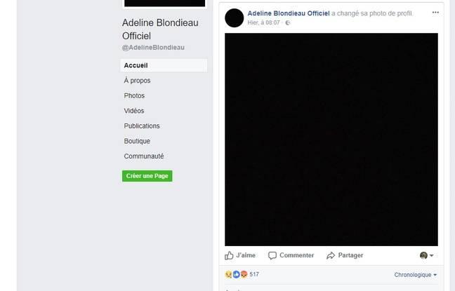 Capture d'écran du compte d'Adeline Blondieau.