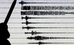 Vue du sismographe du centre d'observation des séismes à Strasbourg prise le 05 décembre 2004
