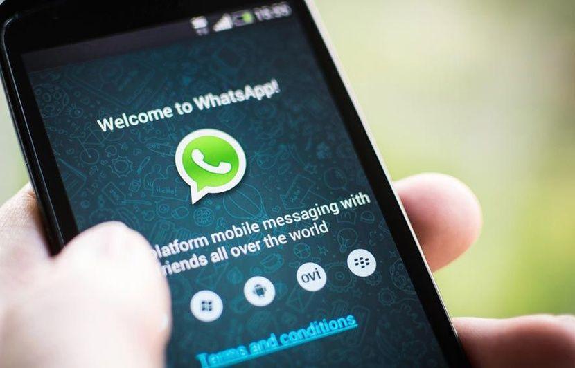 VIDEO. WhatsApp : Pourquoi il ne faut pas cliquer sur le bouton de partage pour le moment