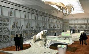 32Miss Fanny, un éléphant de 5 tonnes, est le dernier pensionnaire de l'hôtel de Lisleferme, qui va entrer en rénovation (1). Le nouveau Muséum sera livré en 2014 (2). En attendant les collections sont conservées dans un entrepôt (3).1