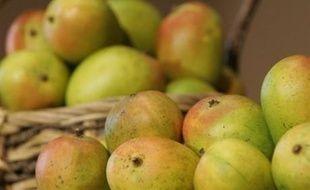 Mangues. Photo d'illustration