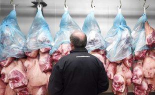 Photo d'archives montrant un éleveur de porcs surveiller une opération de contrôle de la provenance des animaux, le 8 mars 2015, à Brennilis, dans l'ouest de la France.