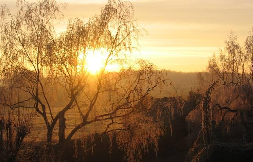 Destination le Val de Loire pour une immersion en pleine nature