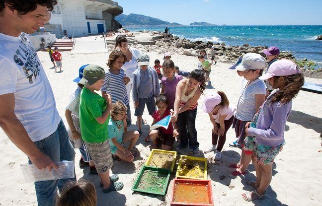 Colonies de vacances: Qu'en pensent les enfants et les parents?
