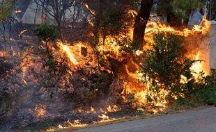Le bilan des incendies en Grèce dans la nuit du 23 au 24 juillet a dépassé les 20 morts.