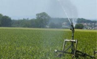 Des arrêtés de restriction d'eau ont été pris dès avril dans le Rhône.