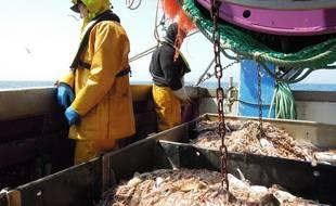 Des pêcheurs en mer.