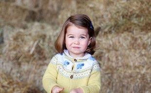 Une nouvelle photo de la princesse Charlotte dévoilée le 1er mai 2017 avant qu'elle ne fête son deuxième anniversaire.
