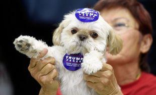 Las Vegas (Etats-Unis), le 3 novembre 2016. Un supporteur de Donald Trump a emmené son chien à un meeting.