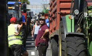 Des agriculteurs bloquent l'A7 le 23 juillet 2015 près de Lyon