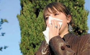 Conjonctivite, asthme et rhinite sont les principaux symptômes des allergies aux pollens d'ambroisie.