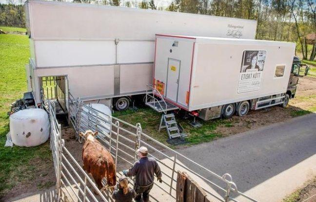 L'abattoir mobile de Hälsingestintan en Suède.