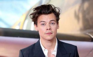 Le chanteur et acteur Harry Styles