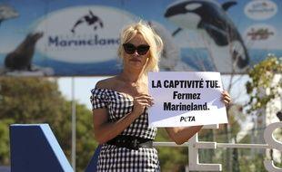 En août 2017, l'actrice Pamela Anderson dénonçait déjà les conditions de captivités des animaux à Marineland, à Antibes.