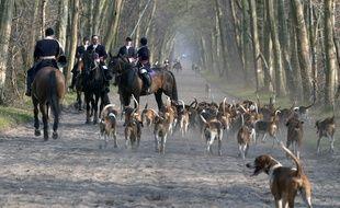 Depuis 2005, il y a eu 7 propositions de loi relatives à l'interdiction de la chasse à courre (illustration).