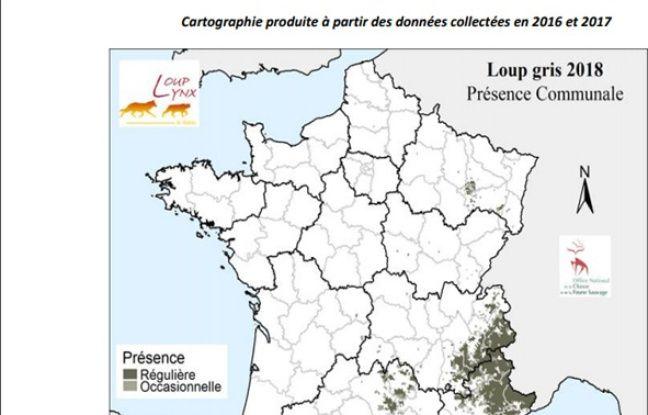 Carte de la présence communale du loup en France.