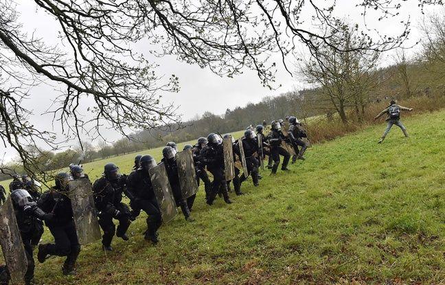 Intervention des forces de l'ordre dans un champ au cœur de la ZAD.