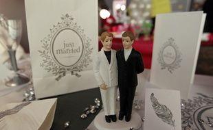 Lille, le 25 novembre 2012. Illustration sur le mariage pour tous au salon du mariage et du PACS a Lille Grand Palais.