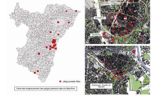 Carte des emplacements des pièges pondoirs pour lutter contre la prolifération du moustique-tigre dans le Bas-Rhin et à Strasbourg.