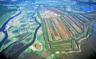Vue aérienne du delta de la Leyre, site remarquable pour sa biodiversité, labellisé zone Ramsar aujourd'hui.