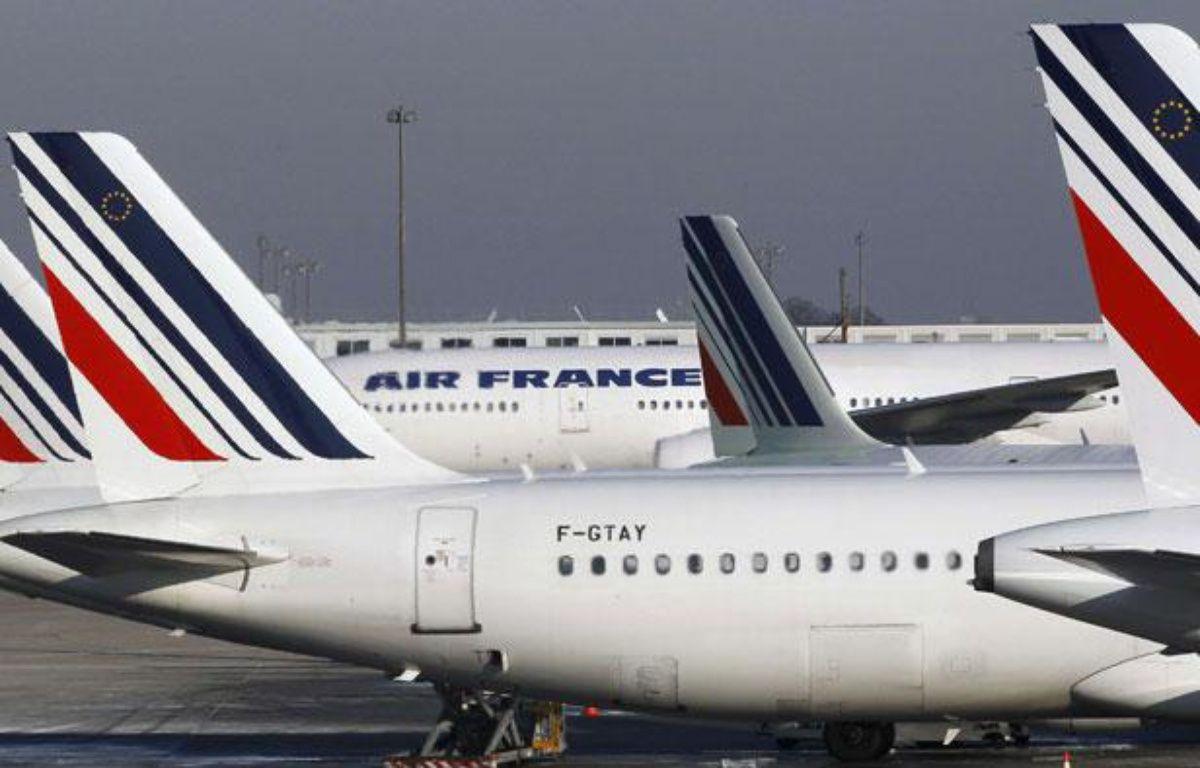 Des avions stationnent à l'aéroport Charles-de-Gaulle de Roissy, près de Paris, le 21 juin 2012. – Christophe Ena/AP/SIPA