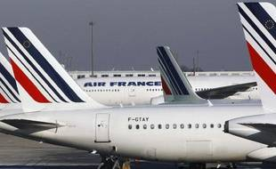 Des avions stationnent à l'aéroport Charles-de-Gaulle de Roissy, près de Paris, le 21 juin 2012.